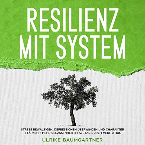 Resilienz mit System Titelbild