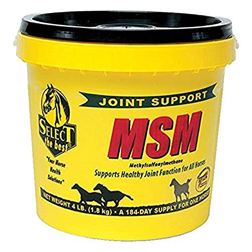 RICHDEL 784299400405 Msm Powder Joint Support for Horses, 4 lb