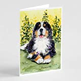 Caroline's Treasures SS8708GCA7P Bernese Mountain Dog Greeting Cards and Envelopes Pack of 8, 7 x 5, Multicolor