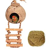 Tfwadmx Coconut Hide with Ladder, Natural Coconut Fiber Hanging Birdhouse Cage, Coconut Bird Shell Breeding Nest for Parrot Parakeet Lovebird Finch Canary (2 Pcs)