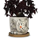 Window Garden Animal Planters - Large Kitty Pot (Dusty) Purrfect for Indoor Live House Plants, Succulents, Flowers and Herbs, Super Cute Planter Gift for Cat Lovers, Office, Christmas.