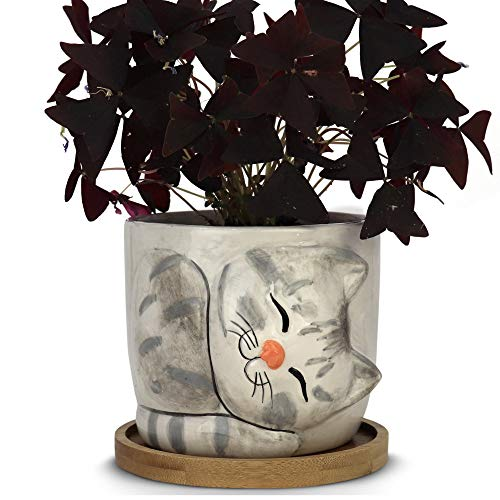 Window Garden – New Large Kitty Pot (Dusty) – Purrfect for Indoor Live House Plants, Like Succulents, Flowers and Herbs. Top Quality, Super Cute Planter Gift for Cat Lovers, Office, Christmas.