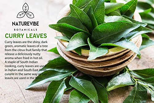 Naturevibe Botanicals Organic Curry Leaves, 1 lb | Gluten-Free, Non-GMO & USDA Organic | Adds Flavor and Aroma (16 ounces)