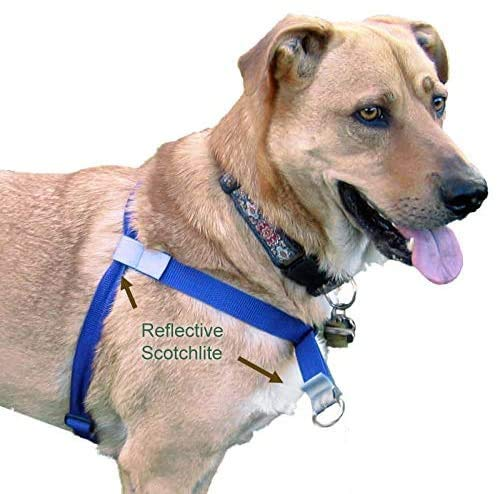 Walk Your Dog with Love, No-Pull Front-Attachment Harness (Sky Blue, 18-35 pounds)