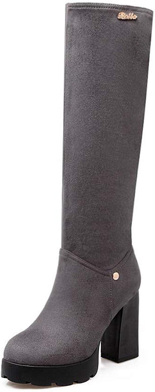 AdeeSu Womens Chunky Heels Platform Imitated Suede Boots SXC03288
