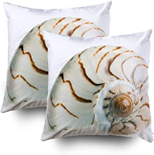 TOMWISH Throw Pillow Covers, 2 Packs Hidden Zippered 18X18Inch Seashell Isolated Over White Background Decorative Throw Cotton Pillow Case Cushion Cover for Home Decor