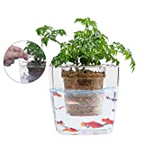 ZDYLM-Y Aquaponique Fish Tank, Système de Culture hydroponique, Jardin de jardinière Auto-arrosant, pousseur de semences de Plantes de Culture