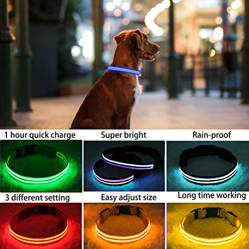 """PPWW Light Up LED Dog Collar - Super Bright - USB Rechargeable, Rainproof - Perfect Use in Rainy Day (Large (18.8-23.6"""" / 48-60cm, Blue)"""