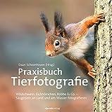 519kDTeBU3L. SL160  - Landschaftsfotografie lernen: 8 Bücher für professionellere Fotos