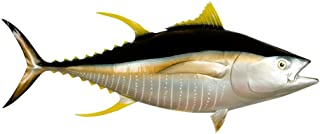 yellowfin tuna replica mount