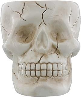 Human Skull Novelty Coffee Mug - Diabolical Bonehead Cup Ceramic 16 oz. Pacific Trading