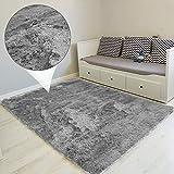 alfombras Salon Grandes - Pelo Largo Alfombra habitación Dormitorio Lavables Comedor Moderna vivero (Gris, 200 x 300 cm)