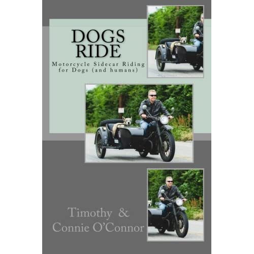 Motorcycle Sidecars: Amazon com
