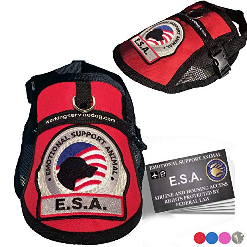 """Premium Small Dog Emotional Support Dog ESA Mesh Vest (15"""" - 18"""" Girth (XS), Red) - Includes 5 Federal Law ESA Handout Cards"""