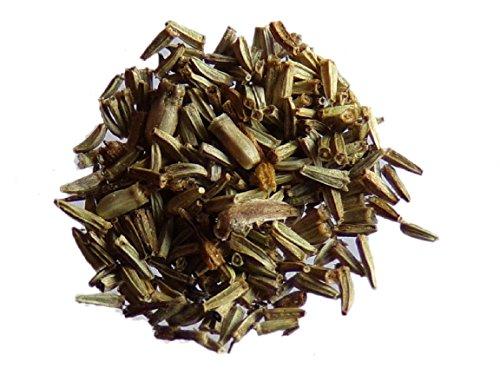 1000 semi del tanaceto, Tanacetum Vulgare, Tansy-(concime Green manure), colore: verde