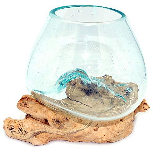 Gedeko Wurzel mit Glasvase Rund Ø ca.11-12 cm Glas Kugelvase Vase auf Holz Wurzelholz (Wurzel 10-14 cm)