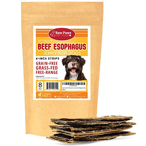 Raw Paws Pet Premium 6-inch Beef Esophagus Dog Treats, 8-ounce - Made in the USA, All-Natural Chews