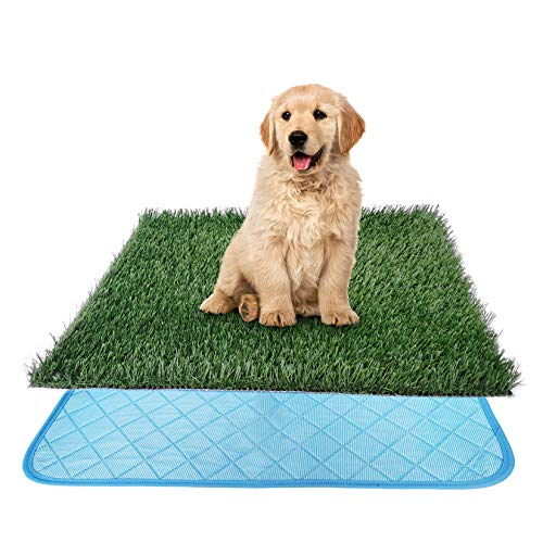 Dog Grass Pee Pads 2 Packs, Artificial Grass Turf Dog Grass Mat and Washable Puppy Grass Pee Pad for Indoor Outdoor Potty Training Use, Professional Reusable Dog Grass Pad for Medium and Small Dogs