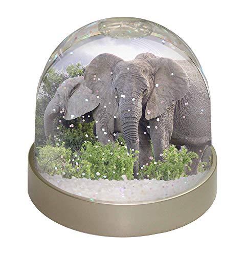 Advanta afrikanischen Elefanten Schneekugel Snow Dome Geschenk, Mehrfarbig, 9,2x 9,2x 8cm