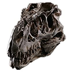 4. Cambrian Resin Tyrannosaurus Rex Dinosaur Skull Model