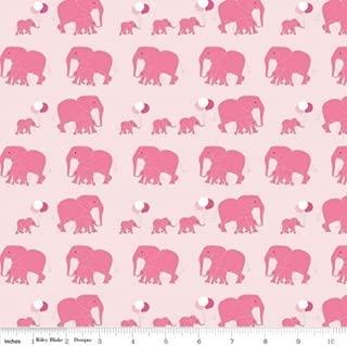 Safari Party Zebras Cotton Fabric Riley Blake By the Yard