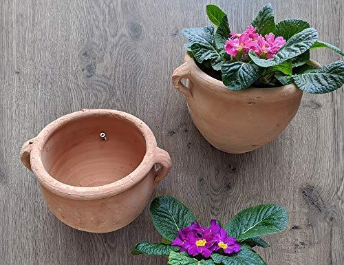 2 Stück Wandamphoren Blumentopf echt Terrakotta ca. 18 cm, Blumenkübel für Garten und Wohnung Terracotta Liegeamphore ........... kein Kunststoff, Blumen
