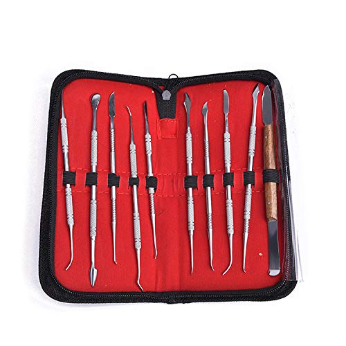 10PCS Stainless Steel Dental Wax Carving Tools Wax Carver Carving Set Surgical Dental Sculpture Knife Instrument Kit with Case