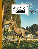Photo Album: Album, Large Photo Albums with Writing Space Memo, Extra Large Capacity Picture Album, Family, Baby, Wedding, Travel Photo Book, 120 Pages | Deinonychus Dinosaur Cover by Evi Thiele