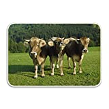 Wdskbg Indoor Outdoor Cows Three Bells Lawn Entrance Rug Floor Mats Shoe Scraper Doormat