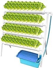 ETE ETMATE Kit de Cultivo de Sitio hidropónico Experimento hidropónico y Cultivo de Agua Sistema de Plantas de jardín Sistema de Cultivo hidropónico para Verduras, Ensalada, Verduras, Frutas