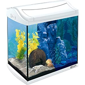 Tetra AquaArt LED Aquarium Complete Set, 30 L, White including Tetra EasyCrystal FilterBox with two replacem...