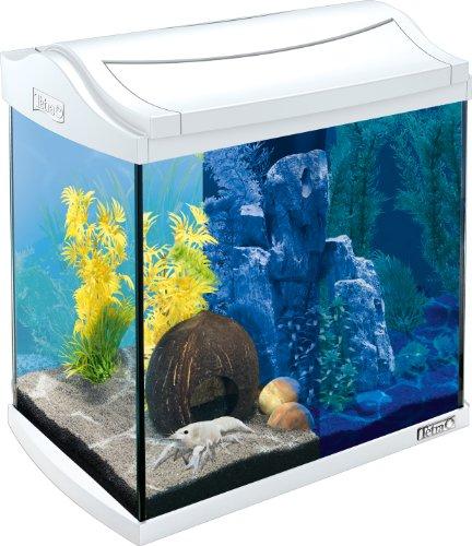 Tetra AquaArt LED Aquarium-Komplett-Set, 30 Liter weiß (inklusive LED-Beleuchtung, Tag- und Nachtlichtschaltung und EasyCrystal Innenfilter, ideal für Krebse und Garnelen)