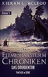 Das Druidentor: Die Elementarsturm-Chroniken   Fantasy in Serie   Episode 1