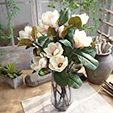 Allywit Artificial Magnolia Flowers, Fake Real Touch Magnolia Bouquet for Indoor Outdoor Wedding Home Garden Patio