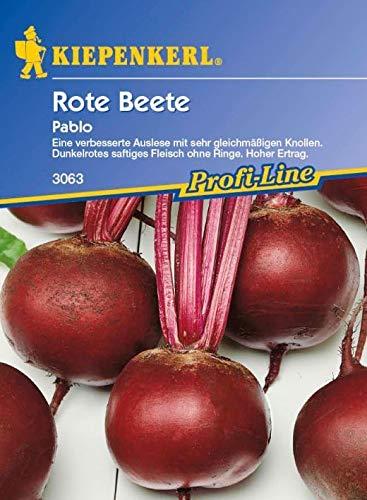 ScoutSeed Kiepenkerl - Rote Beete Pablo F1 Rote Beete 3063 Dunkelrot + Saftig