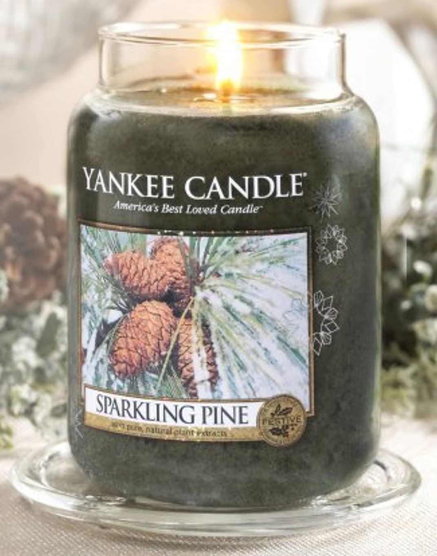 ラウンジ肥満中絶Yankee Candle Sparkling Pine Large Jar Candle