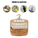 evergremmi Porteur léger pour Oiseaux, Cage de Voyage pour Oiseaux, Cage d'alimentation pour Oiseaux, Cage de Voyage Ronde, Perroquet Respirant, pour Petits Oiseaux