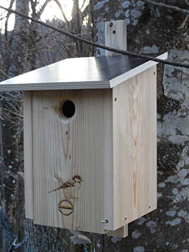Premium Natur Lärchenholz Nistkasten unbehandelt nach Nabu Kohlmeise 32mm Einflugloch, massives Vogelhaus Nisthilfe wetterfest 18mm stark verschraubt, mit Befestigungsmaterial