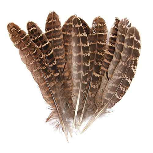 Hgshow Silver Pheasant Feathers 4-6 inches,hand sorting,per pack of 100