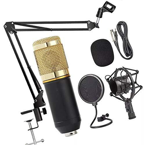 Kit Microfone Estúdio BM800 + Pop Filter + Aranha + Braço Articulado 813 - Lorben