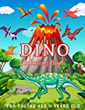 Dino Coloring Book For Youths Age 11 Years Old: coloring book, ... Spinosaurus, Allosaurus,Realistic Dinosaur Designs Coloring Book With TRex, Diplodocus