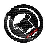 DAMOTUO Caja de los calcomanías del Protector de Gases de Gas de Combustible de Combustible de la Motocicleta del Aspecto de la Motocicleta 3D para Honda VTR250 VTR 250 1997-2012