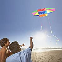Beach Kites for Adults Large with Long Tail, 98 inches Super Easy Flyer 3D Rainbow Box Kites, Come with 49 Feet Multi…