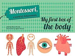 My First Box of the Body - Montessori World of Achievements