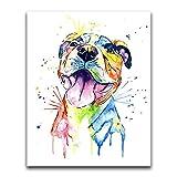 Xykhlj Pintura por numeros con por numeros - Animal- Bulldog francés - Lienzo preimpreso - DIY Painting Adultos - cumpleaños Bodas día de Navidad decoración - 40x50cm - (Marco de Bricolaje)