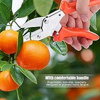 剪定ばさみガーデニングツール剪定カッター剪定ばさみ花の果樹の植物に実用的