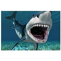 Ipea サメの水中海の動物壁アートキャンバスポスター絵画写真壁の装飾部屋の装飾家の装飾(19.69X29.52インチ)50X75Cmフレームなし