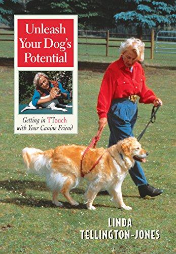 Unleash Your Dog