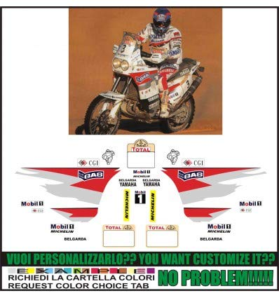 Emanuel & Co XT 750 Z Super TENERE Replica ORIOLI Paris Dakar 1996: Amazon.es: Coche y moto