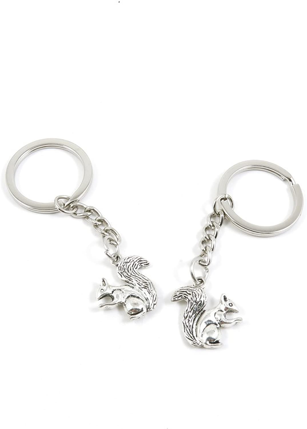 180 Pieces Fashion Jewelry Keyring Keychain Door Car Key Tag Ring Chain Supplier Supply Wholesale Bulk Lots M6IN8 Squirrel
